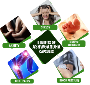Ashwagandha Supplement benefit in ayurveda